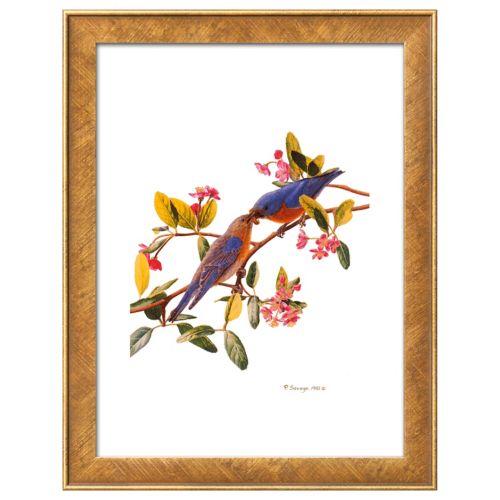 Art.com Eastern Bluebird Framed Wall Art
