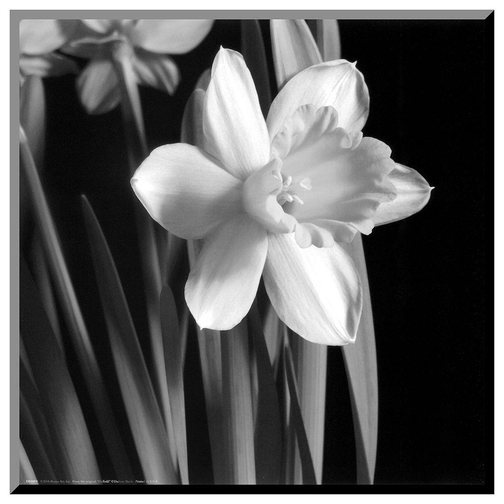 Art.com Daffodil Wall Art