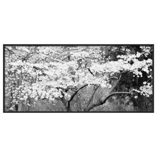 Art.com Blossom Tree Framed Wall Art