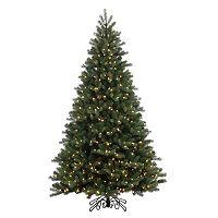 Vickerman 7.5-ft. Pre-Lit Noble Spruce Instant Shape Artificial Christmas Tree