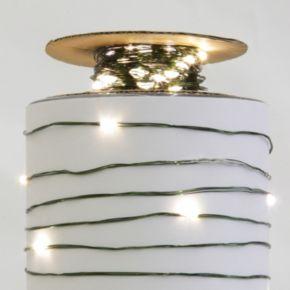Vickerman Warm White LED Micro Lights