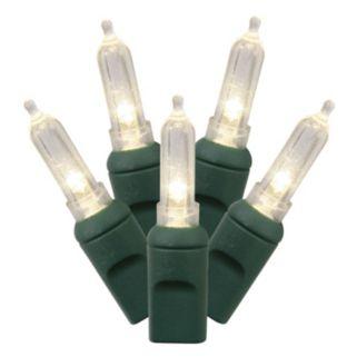 Vickerman 100 Light Italian Warm White LED Christmas Lights