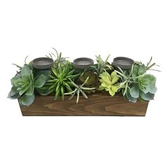 SONOMA Goods for Life™ Farmhouse Artificial Succulent 3-Tealight Candle Holder Box