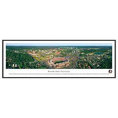 Florida State Seminoles Stadium Aerial Framed Wall Art
