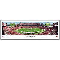 Tampa Bay Buccaneers Football Stadium Framed Wall Art