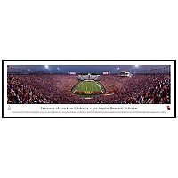 South Carolina Gamecocks Football Stadium Framed Wall Art