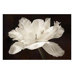 Artissimo White Tulip Canvas Wall Art