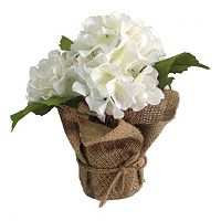 SONOMA Goods for Life™ Artificial White Hydrangea Potted Plant