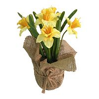 SONOMA Goods for Life™ Artificial Daffodil Potted Plant