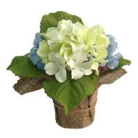 SONOMA Goods for Life™ Artificial Hydrangea Potted Plant