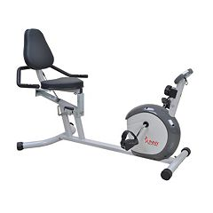 Sunny Health & Fitness Recumbent Bike (SF-RB4601)