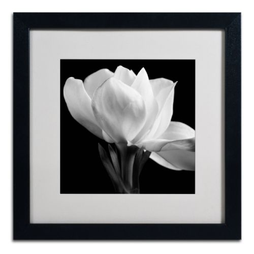 Trademark Fine Art Gardenia Black Framed Wall Art