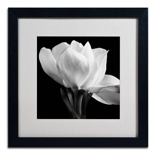 Trademark Fine Art Gardenia Black Framed Wall Art
