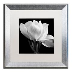Trademark Fine Art Gardenia Silver Finish Framed Wall Art