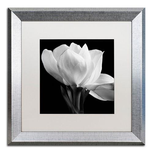 Trademark Fine Art Gardenia Silver Finish Framed Wall Art