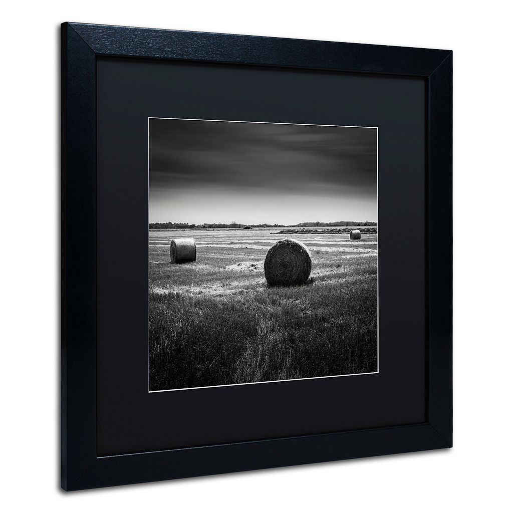 Trademark Fine Art Rural Black Framed Wall Art