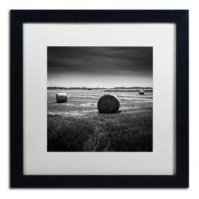 Trademark Fine Art Rural Black Framed Wall Art