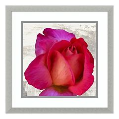 Spring Roses III Framed Wall Art