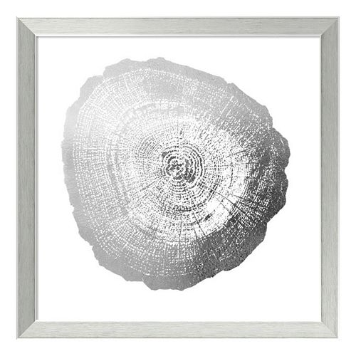 Tree Ring IV Metallic Print Framed Wall Art