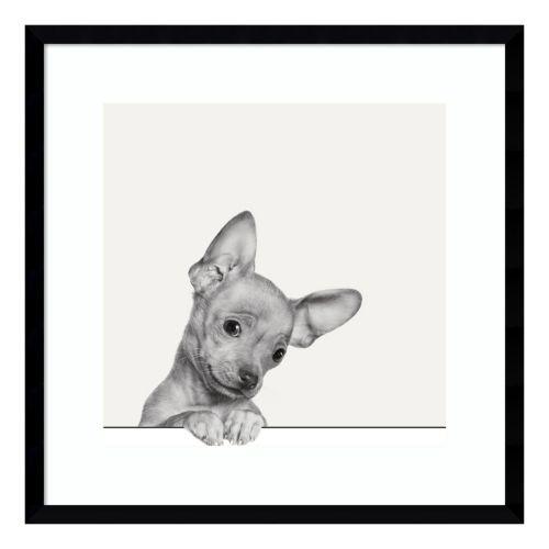 Sweet Chihuahua Dog Framed Wall Art
