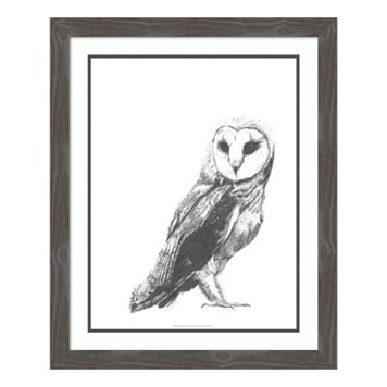 Wildlife Snapshot: Owl Framed Wall Art