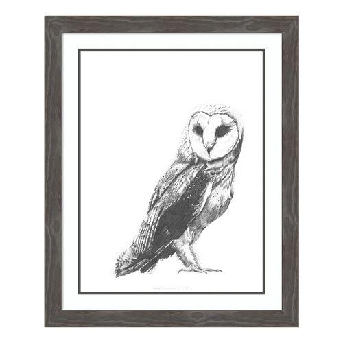 Wildlife Snapshot: Owl Framed Wall Art