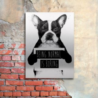 """Trademark Fine Art """"Being Normal Is Boring"""" Large Canvas Wall Art"""