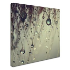 Trademark Fine Art Forgotten Wishes Large Canvas Wall Art