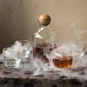 Cathy's Concepts Toxic Spider Glass Decanter Set