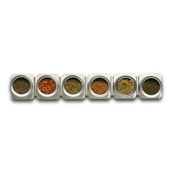 Kamenstein Magnetic 6-Tin Magnetic Spice Strip