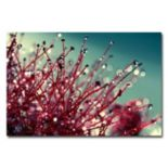 Trademark Fine Art For You And Me Canvas Wall Art