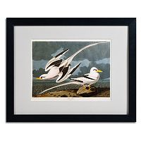 Trademark Fine Art Tropic Bird Black Framed Wall Art