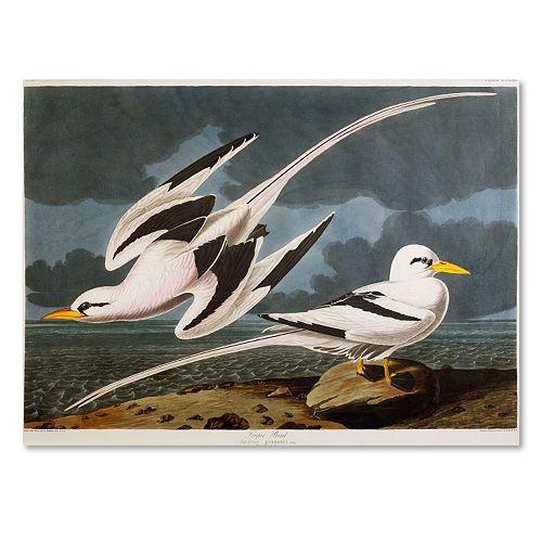 Trademark Fine Art Tropic Bird Canvas Wall Art