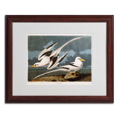 Trademark Fine Art Tropic Bird Framed Wall Art