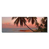 Trademark Fine Art Cayman Palms II Canvas Wall Art