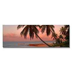 Trademark Fine Art Cayman Palms II Canvas Wall Art