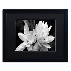 Trademark Fine Art Tuber Rose In Black And White Framed Wall Art