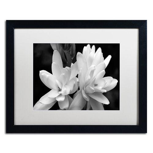 Trademark Fine Art Tuber Rose In Black And White Framed Wall Art