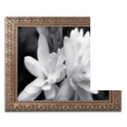 Trademark Fine Art Tuber Rose In Black And White Ornate Framed Wall Art