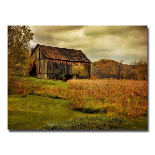 Trademark Fine Art Old Barn On Rainy Day Canvas Wall Art