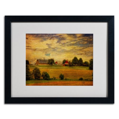 "Trademark Fine Art ""Summer Farm"" Matted Black Framed Wall Art"