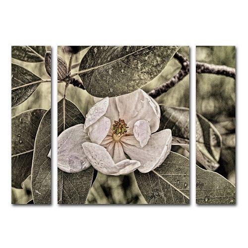 Trademark Fine Art White Magn...