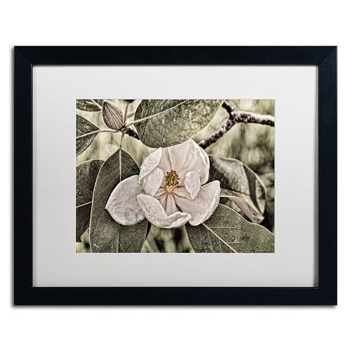 "Trademark Fine Art ""White Magnolia"" Matted Black Framed Wall Art"