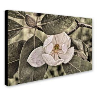 """Trademark Fine Art """"White Magnolia"""" Canvas Wall Art"""