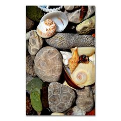 Trademark Fine Art 'Petoskey Stones ll' Canvas Wall Art