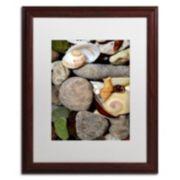"Trademark Fine Art ""Petoskey Stones ll"" Matted Wood Finish Framed Wall Art"