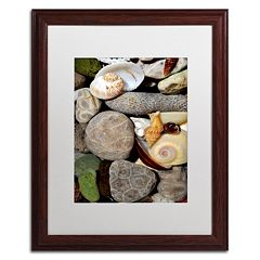 Trademark Fine Art 'Petoskey Stones ll' Matted Wood Finish Framed Wall Art