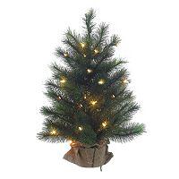 Kurt Adler 2-ft. Pre-Lit Highland Christmas Tree
