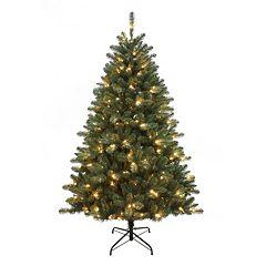 Kurt Adler 6-ft. Pre-Lit Northwood Pine Christmas Tree