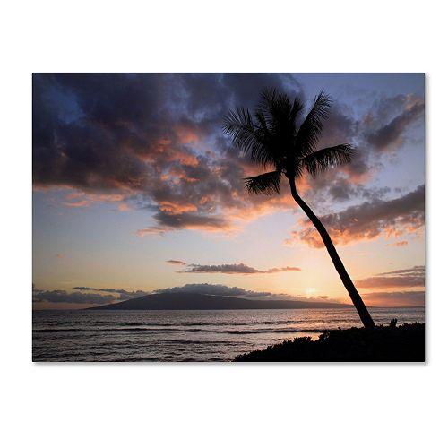 "Trademark Fine Art ""Palm Tree Maui"" Canvas Wall Art"